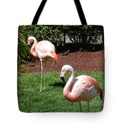 Lawn Ornaments Tote Bag