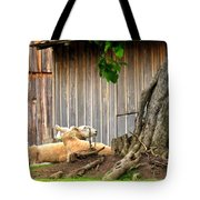 Lawnmowers At Rest Tote Bag