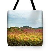 Layered Adirondack Colors Tote Bag