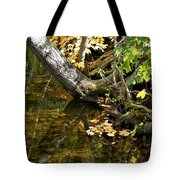 Layered Reflections Tote Bag