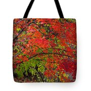 Layers Tote Bag by Ed Smith