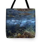 Layers Of Color Tote Bag