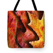 Layers Of Shades Of Autumn Tote Bag