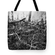 Layers Of Time Passed Tote Bag