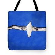 Laysan Albatross Tote Bag