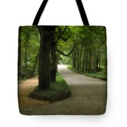 Lazienki Park Warsaw Diffused Tote Bag