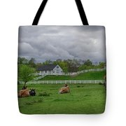 Lazy Afternoon In The Country Tote Bag