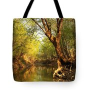 Lazy Afternoon On The Creek 2 Tote Bag
