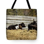 Lazy Cows And Weathered Wood Tote Bag