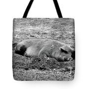Lazy Hog Tote Bag