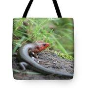 Lazy Lizard Tote Bag
