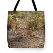 Lazy Samburu Afternoon Tote Bag