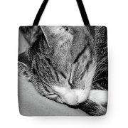 Lea Sleepy Cat Tote Bag