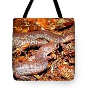 Leadback Salamander Pair Tote Bag