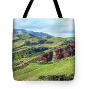 Leader Road View Tote Bag