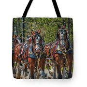 Leading The Way-budweiser Clydesdales Tote Bag