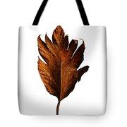Leaf 0787 Tote Bag