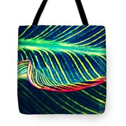 Leaf Abstract 8 Tote Bag