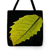 Leaf Aglow Tote Bag
