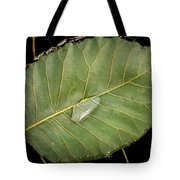 Leaf And Water Tote Bag