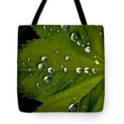 Leaf Covered In Raindrops Tote Bag