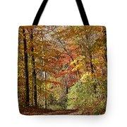 Leaf Covered Path Tote Bag