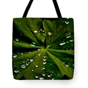 Leaf Covered With Water Droplets Tote Bag