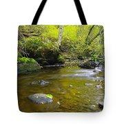 Leaf Dappled  Tote Bag