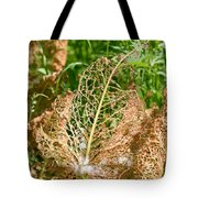Leaf Eaten By Insects Tote Bag