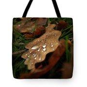 Leaf In Autumn. Tote Bag