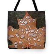 Leaf It Be Tote Bag