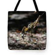 Leaf Of Fall Tote Bag