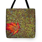 Leaf Pond Tote Bag