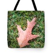 Leaf Resisting The Rain Tote Bag