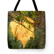 Leaf Shadows And Light Tote Bag