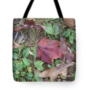 Leaf Standing Out In A Crowd Tote Bag