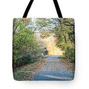 Leaf-strewn Path Tote Bag