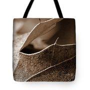 Leaf Study In Sepia II Tote Bag
