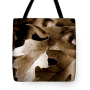 Leaf Study In Sepia IIi Tote Bag