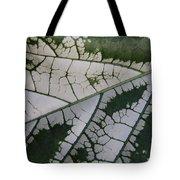Leaf Variegated 1 Tote Bag