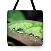 Leaf Veins And Raindrops Tote Bag
