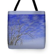 Leafless Tote Bag
