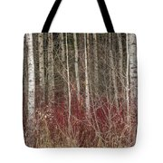 Leafless Color Tote Bag
