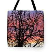 Leafless Silhouette Tote Bag