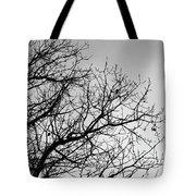 Leafless Twig Tote Bag