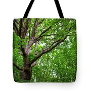 Leafy Canopy Tote Bag