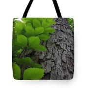 Leafy Ladder Tote Bag