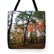 Leafy Pathway Tote Bag