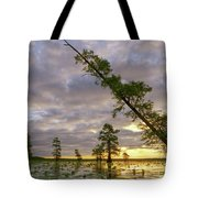 Leaning Cypress Tote Bag