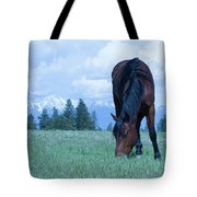 Leaning Horse Tote Bag